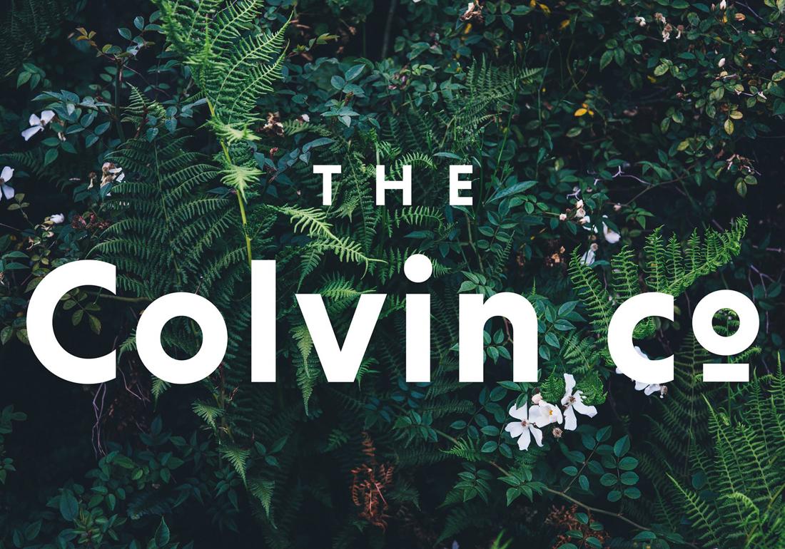 The colvin co la revoluci n de las flores baldarian - The colvin co ...